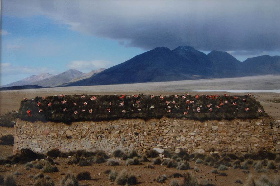 Marion Kieft - Intervention 11, Chili 2010 - met garen bewerkte foto - 20 x 30 cm