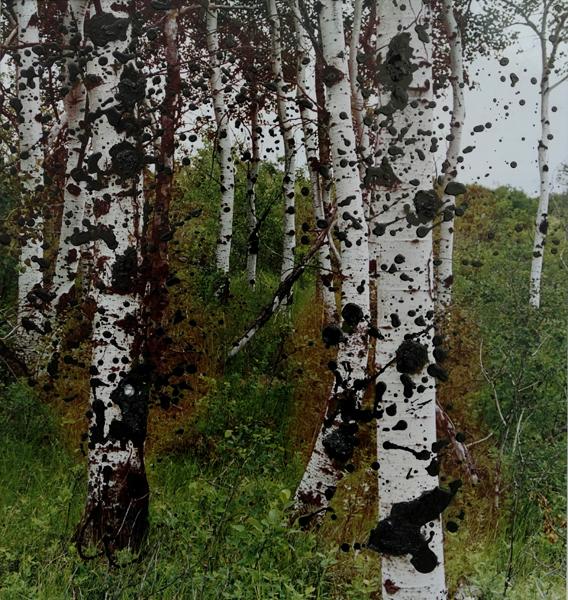 Marion Kieft - Fall is coming, 2005 - bewerkte foto - 30 x 32 cm