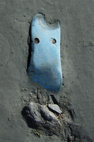 Marion Kieft - Flip-flop 6, Nepal 2004 (flip-flops, the continuing story) - fotoprint op aluminium/dibond