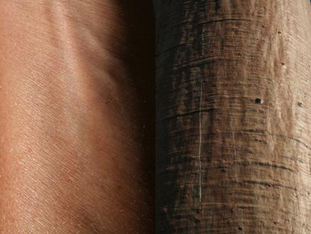 Marion Kieft - Skin 1, 2010 - fotoprint, 60 x 90 cm